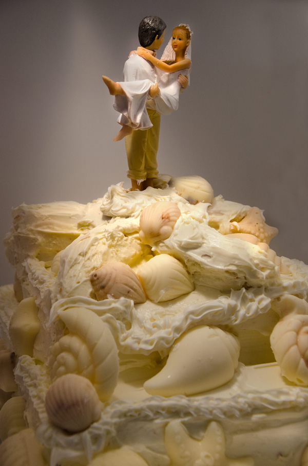 Groom carrying his bride a top a beach inspired wedding cake