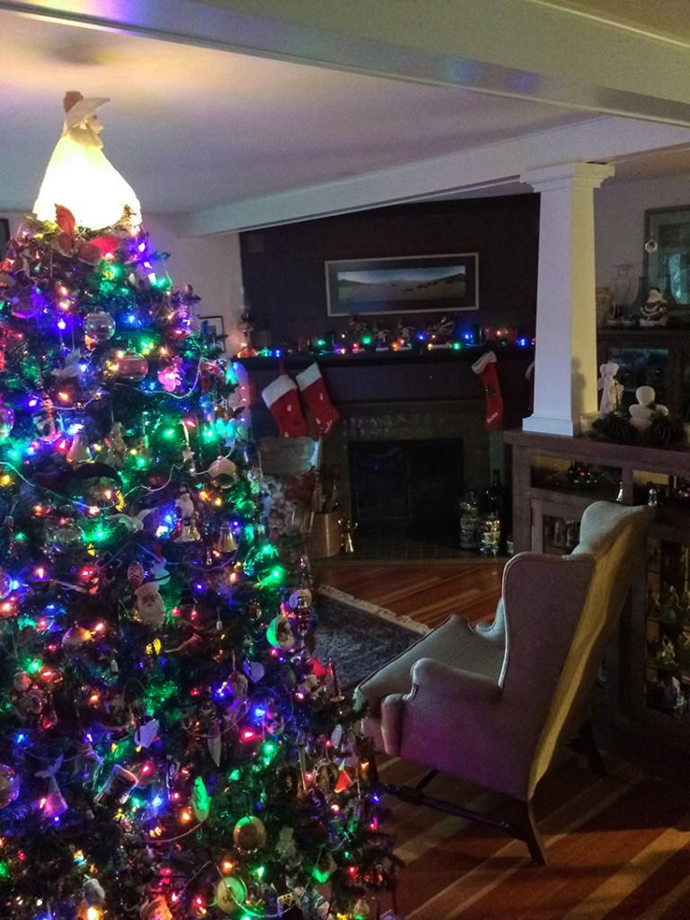 Deborah's Christmas Tree 2015