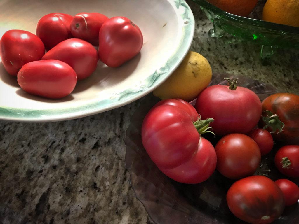 Tomatoes-Autumn-2017